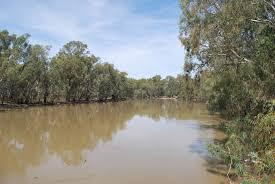 Murray River 2